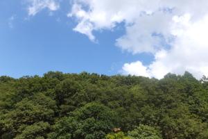 潤井戸公園